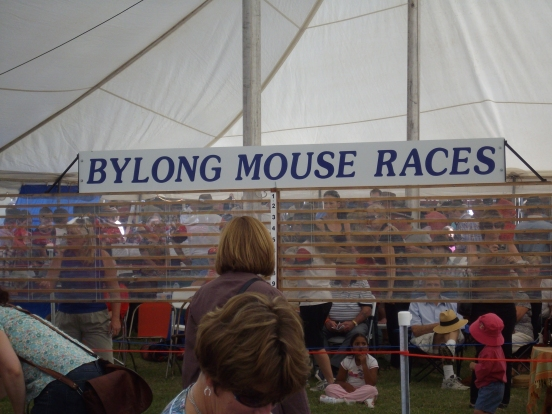 Bylong mouse races2